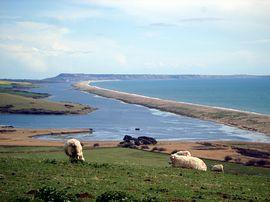 Bed And Breakfast Fleet Dorset